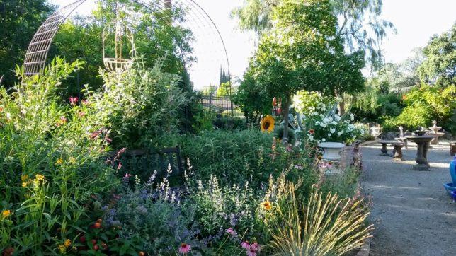 Re-Introducing our Butterfly - Hummingbird Garden - Alden Lane Nursery