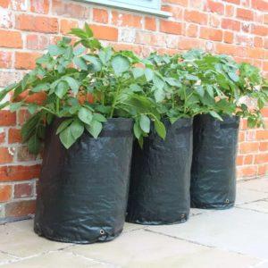 Grow Potatoes In Grow Bags Alden Lane Nursery